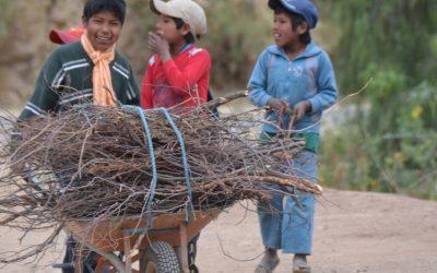 """Código """"Niña, Niño y Adolescente"""" de Bolivia  y la Organización Internacional del Trabajo…"""